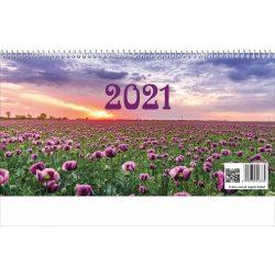 Képes asztali naptár + hát 2020