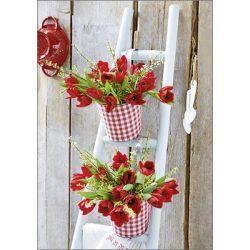 Képeslap, piros tulipánok