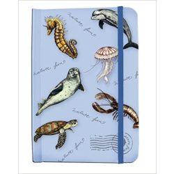 Notesz, Nature fun tengeri