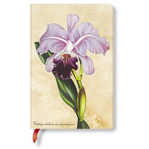 Paperblanks butikkönyv Brazilian Orchid mini vonalas