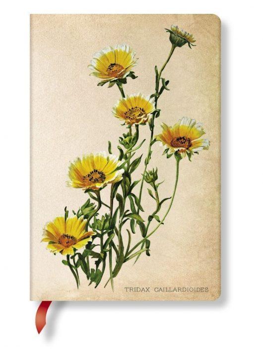 Paperblanks butikkönyv Woodland Daisies mini vonalas