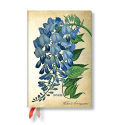 Paperblanks naptár (2020) 12 hónapos - Blooming Wisteria mini horizontális