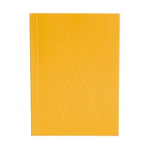 Paper-Oh Puro Gold A7 vonalas