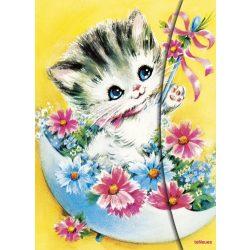 teNeues napló, A5 mágneses, Kitty