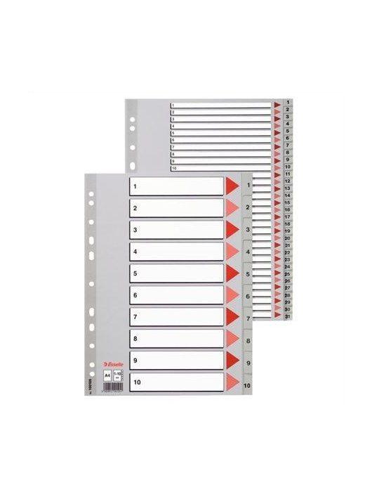 Regiszter, műanyag, A4, 1-10, ESSELTE, szürke (E100105)