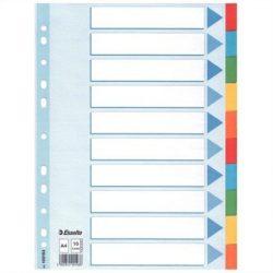 """Regiszter, karton, A4, 10 részes, írható előlappal, ESSELTE """"Standard"""", színes  (E100193)"""