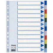 Regiszter, műanyag, A4, 12 részes, ESSELTE (E15262)