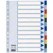 Regiszter, műanyag, A4, 20 részes, ESSELTE (E15263)