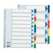Regiszter, műanyag, A4 Maxi, 10 részes, ESSELTE (E15267)