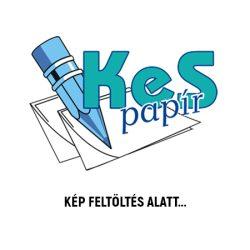 Herlitz iskolai etikett 9 db kék keretes