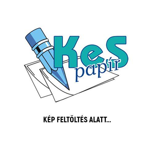 Herlitz címkönyv 7,5x11 cm, 132 oldalas, műbőr, fekete/kék