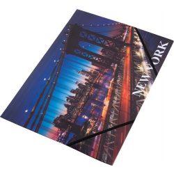 "Gumis mappa, 15 mm, PP, A4, PANTA PLAST, ""New York"""