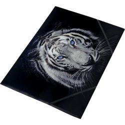 "Gumis mappa, 15 mm, PP, A4, PANTA PLAST, ""Tiger"""