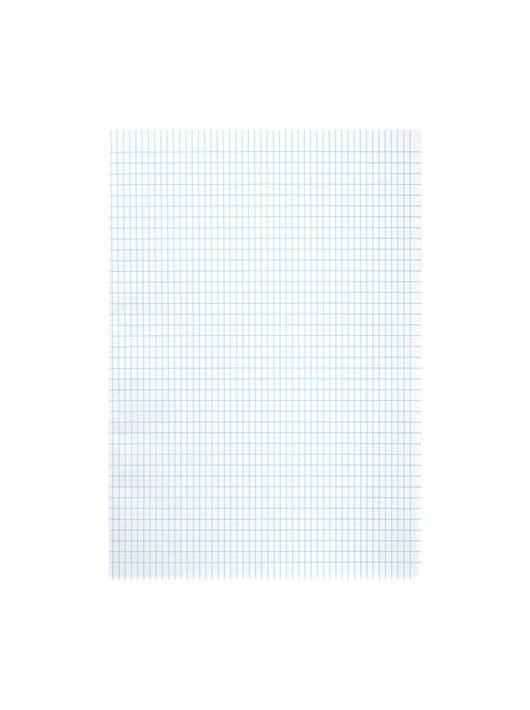 Rovatolt papír, A3, franciakockás, VICTORIA, 20 lap