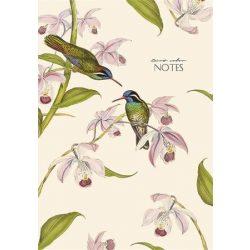 """Jegyzetfüzet, ragasztott, vonalas, A4, 80 lap, keményfedeles, SHKOLYARYK """"Birds colour"""", vegyes"""